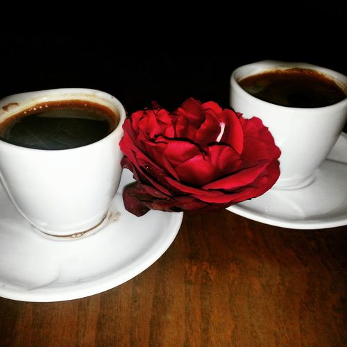 Coffee Break Afternoon Rose🌹 My Life Photography