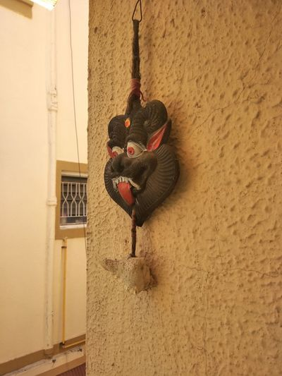 Man with lizard on wall