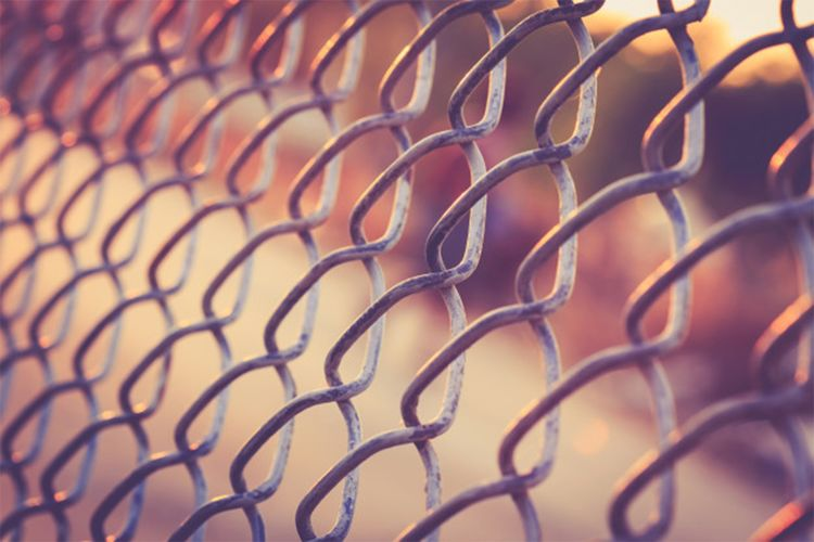 Wire the grid Metal Close-up No People Fence Backgrounds Selective Focus Pattern Full Frame Protection Security Barrier Safety Boundary Repetition Chainlink Fence Outdoors Connection Wire Grid Day
