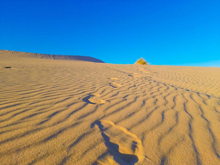 Tire tracks in sahara desert of algeria
