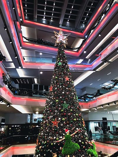First of December. The first Christmas Tree. Christmas Christmas Tree Fancy Love HongKong December Christmas Decorations Christmas Around The World Christmastime