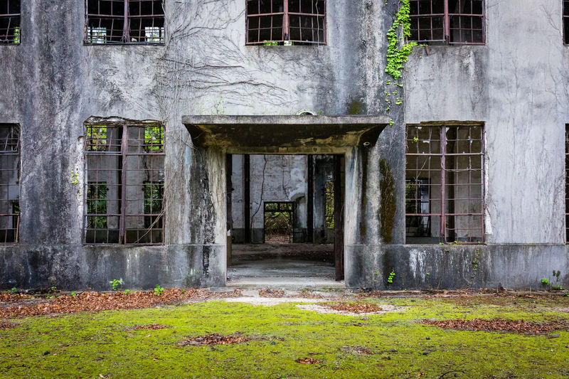 Doorway Built Structure Architecture Building Exterior Building Window No People Day Old Abandoned Outdoors Plant Door Spooky Entrance Nature Tree House Obsolete Weathered Grass Japan Japan Photography Canon Canonphotography Doorway Ruined Ruins Ruins Architecture Okunoshima Urbex Explore Urban