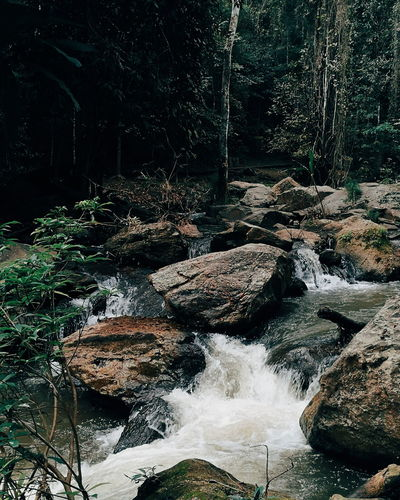 Natural fall Natural Nature Fall Trees Tree Green Green Tree Natural Green  Water Fall Stone Water Nature No People Outdoors Forest Scenics Beauty In Nature