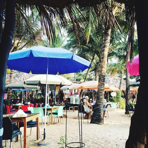 La Plague beautiful restaurant on Mandrem beach Goa Ashvem Beach Ashvem Chair Tree Table Day Outdoors Beach Nature People