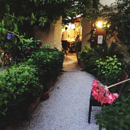 Porto Azzurro 🌺🐠🐟⚓️ Isola D'Elba  In Vino Veritas Restaurant Italy