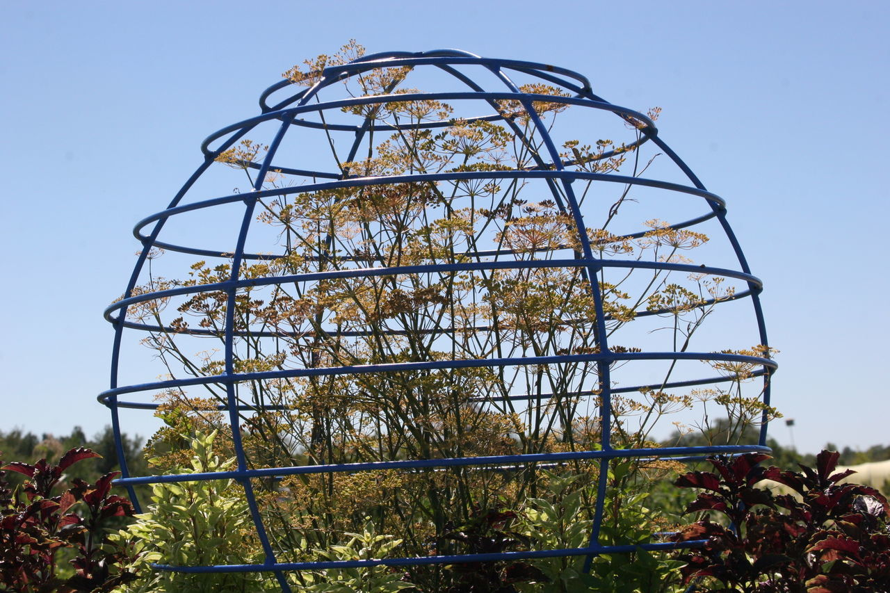 Metallic Structure Covering Plants In Yard Against Clear Blue Sky