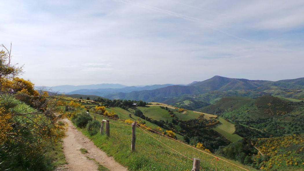 O Cebreiro Jakobsweg El Camino De Santiago Way Of Saint James Weg Way Pilgern Pilgrimage Camino CaminodeSantiago Cebreiro