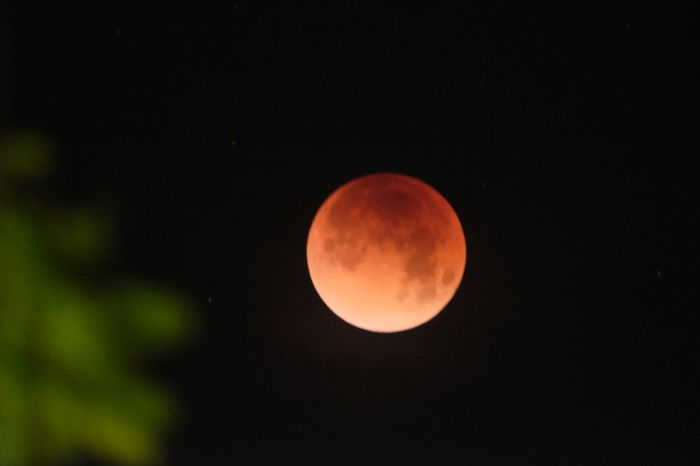 Blood Moon Blood Moon 2018 Full Moon Beauty In Nature Blood Moon Lunar Eclipse 2018 Mesa Arizona Nature Night No People Outdoors