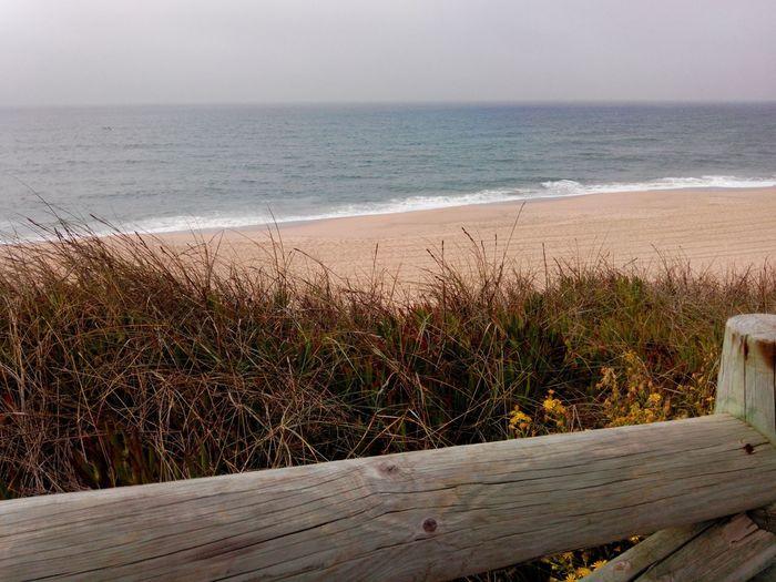 SantaCruzBeach Santacruz Beachphotography Beach Praiadonavio Praia Praiadesantacruz Winterbeach Playa Windowtothesea