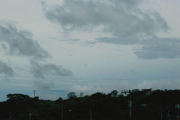 dia Storm Cloud