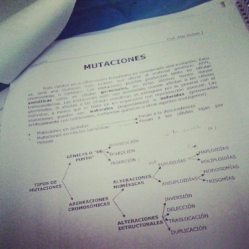Study Biology Mutaciones Bored