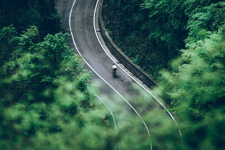 High angle view of boy cycling on road amidst trees in forest