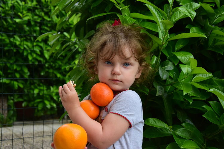Portrait of cute girl holding oranges by plants