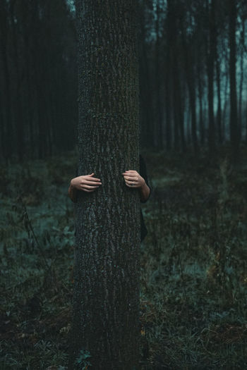 Person wearing mask on tree trunk in forest