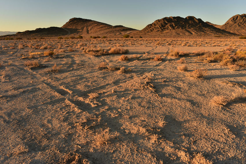 vehicle tire tracks in Mojave desert landscape Road Arid Climate Beauty In Nature Day Desert Landscape Mountain Nature No People Outdoors Scenics Sky Tire Track Tire Tracks Tranquil Scene Tranquility
