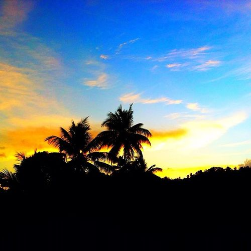 Silhouette Skyporn Sky_captures Grenadian Grenada Cloudporn Wu_caribbean World_union