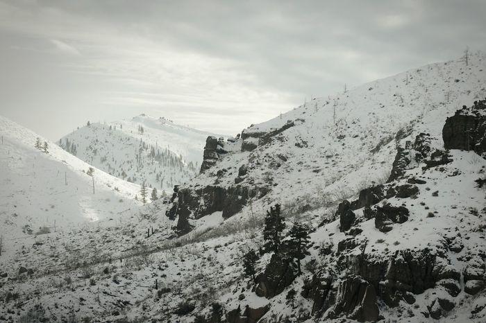 Winter Wonderland Truckee  Hwy80 Snowcapped Mountain