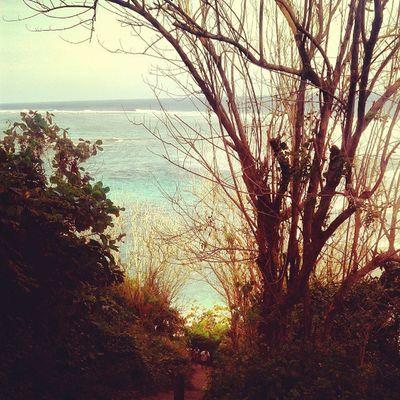 beach Balibeach Beach Secretbeach  Hiddenbeach Seas Ocean Wave Coral Trees Forest Instanusantrabali Instanusantara Picoftheday Photooftheday Sky Skymadness Beachmadness Igers Samsung Instanesia Instagood Instadaily Bali INDONESIA LangitbaliPhotoworks