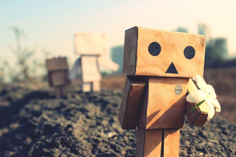 Expressed Emotions Feelings Danbophotography Danbo EyeEm Selects Focus On Foreground No People Close-up Day Outdoors Childhood Nature Sky