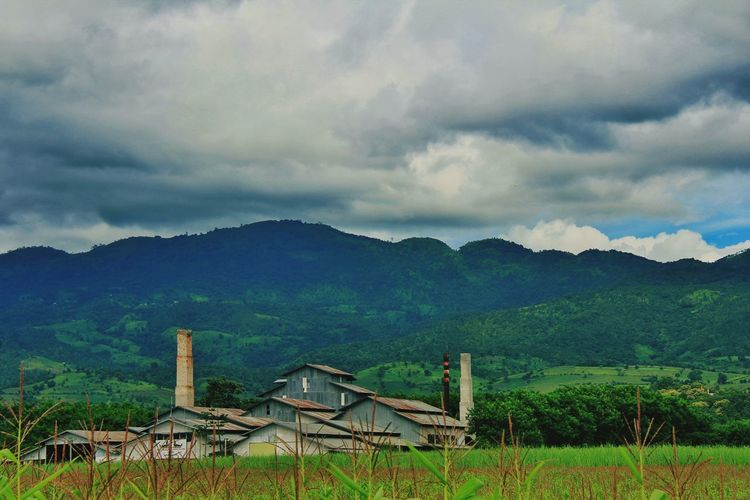 Factory in Inle EyeEm EyeEm Nature Lover EyeEmNewHere Oil Pump Tree Mountain Storm Cloud Agriculture Sky Landscape Green Color Cultivated Land Rice - Food Staple Agricultural Field