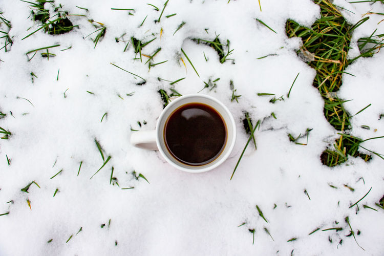 High angle view of coffee cup on snow covered plants