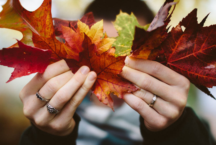 Nature Orange Red Autumn Beauty Change Close-up Day Fall Holding Holding Leafs Holding Leaves Human Body Part Human Hand Indoors  Leaf Leaf Vein Maple Leaf One Person Real People Seasonal