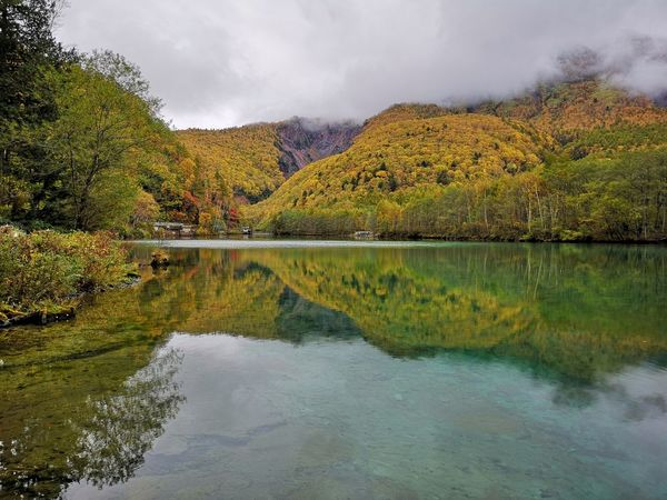 morning mist Yellow Mountain Taicho Pond Morning Trail Hiking Serenity Kamikochi Autumn colors Water Tree Multi Colored Mountain Lake Autumn Reflection Sky Symmetry Overcast Reflecting Pool Standing Water