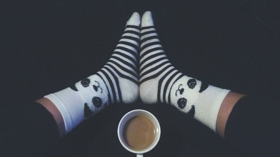 TK Maxx Socksie Human Body Part One Person Indoors  One Woman Only Socks Panda