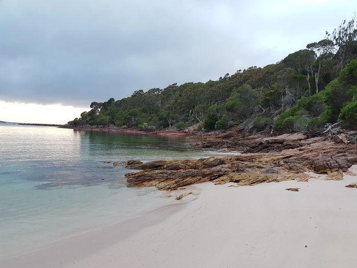 National Park Ben Boyd National Park Beach Sapphire Coast New South Wales  Bittangabee Bay Australia Coast Sunrise Beach Sand Sea Nature Tropical Climate Water Outdoors