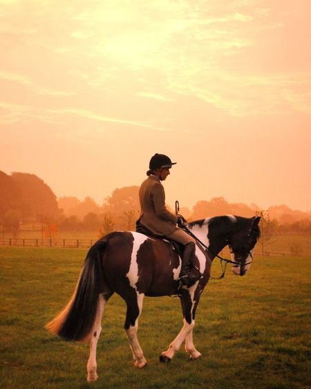 My friend on her steed, Bally Horse Horseriding English Countryside Working Animal Lifestyles Autumn Colors Mistymorning Earlyrise Sunrise Sunrise_Collection Country Life Countryside Warwickshire Motion Riding Hunting Tradition England Canonphotography Golden Hour
