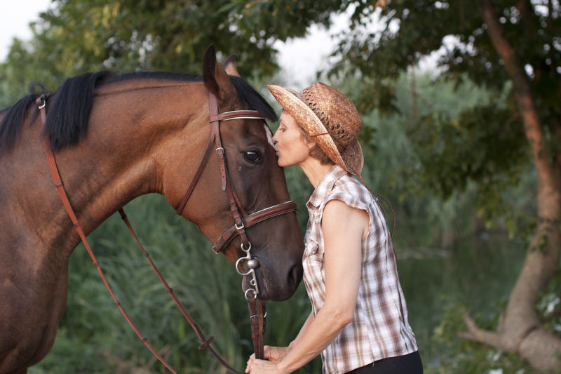 Close-up of woman kissing horse against trees