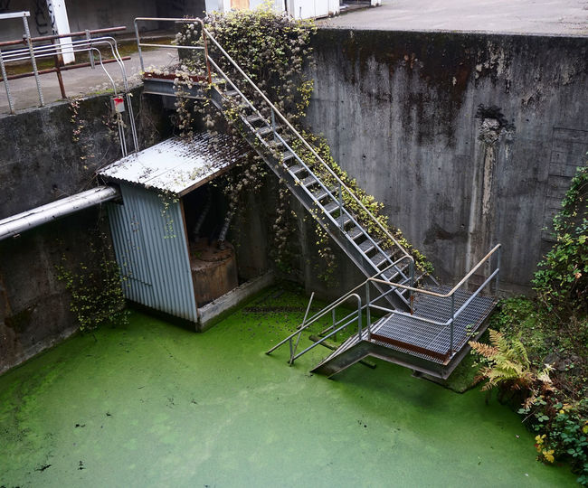 Architecture Built Structure Abandoned No People Staircase Metal Plant Old Weathered Water Railing Empty Run-down High Angle View Green Color Overgrown Nature Textures Mutagen