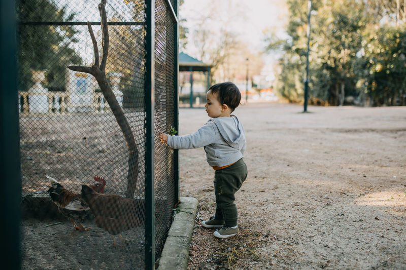 Full length of boy standing by fence