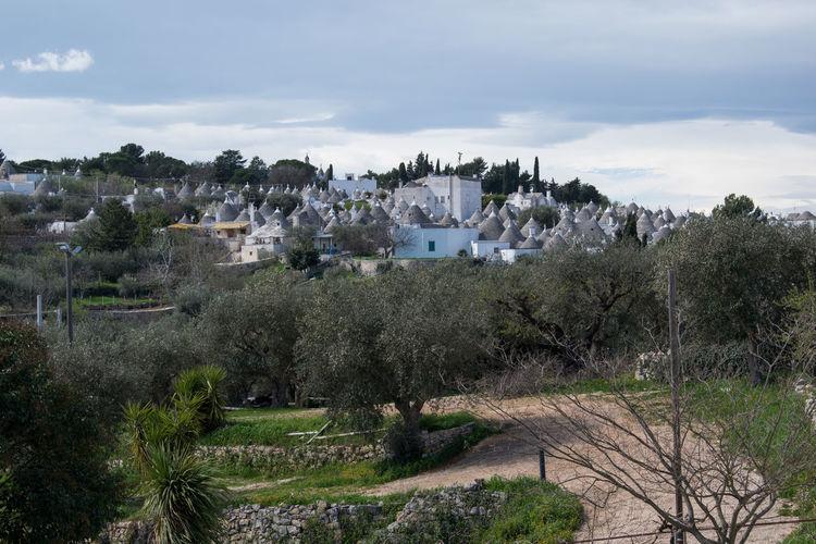 Alberobello a
