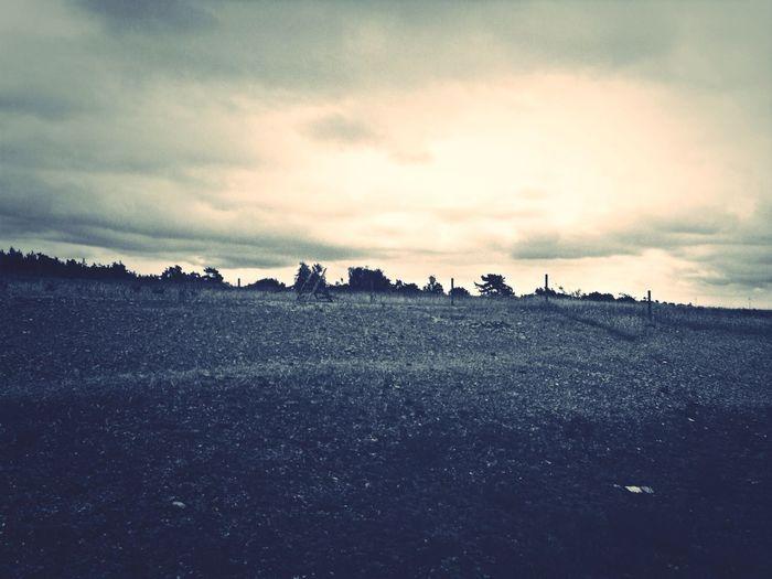 Black And White Blackandwhite Landscape Hello World