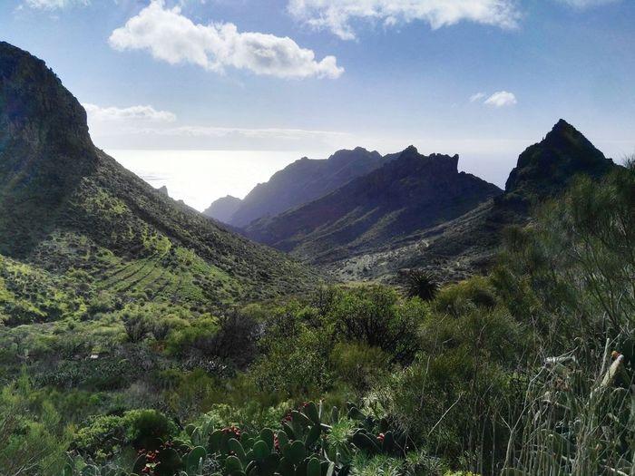 Nature Vacations No People Mountain Macizo De Masca