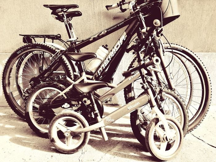 Bicycle Family Time Springtime Twowheels Chill EyeEmNewHere