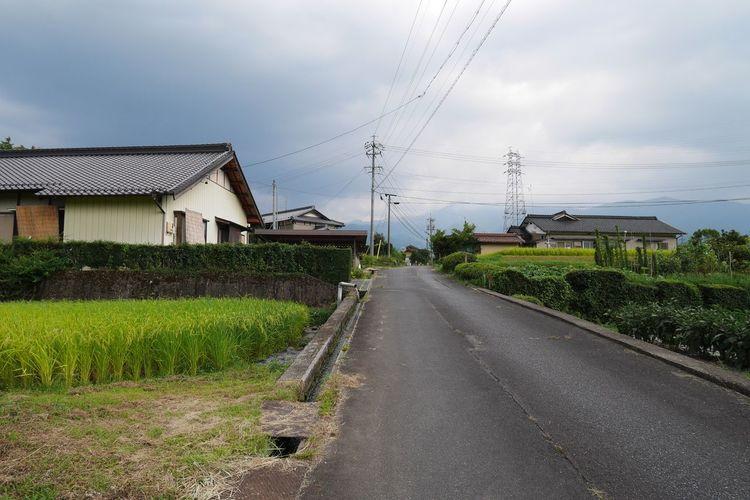 Power Line  Sky