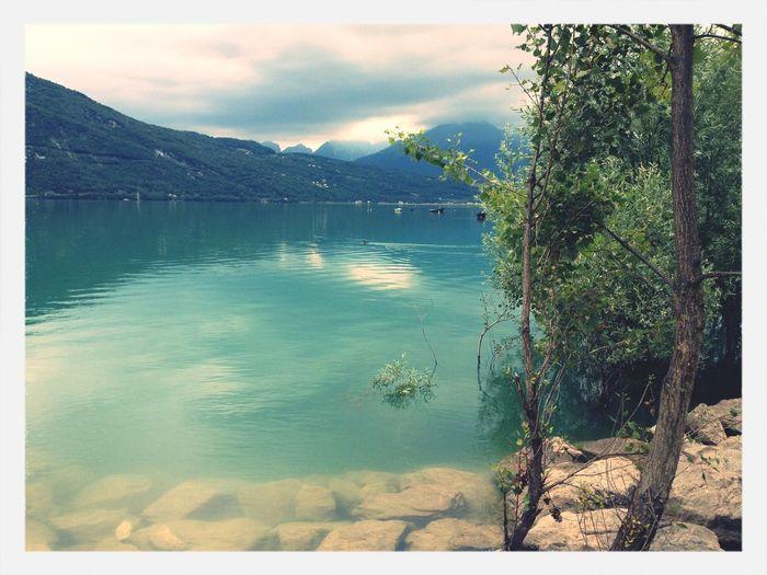 Santa Croce lake Lake Nature Lago Di Santa Croce Alpago