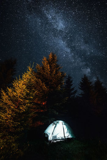 Tent and trees against sky at night