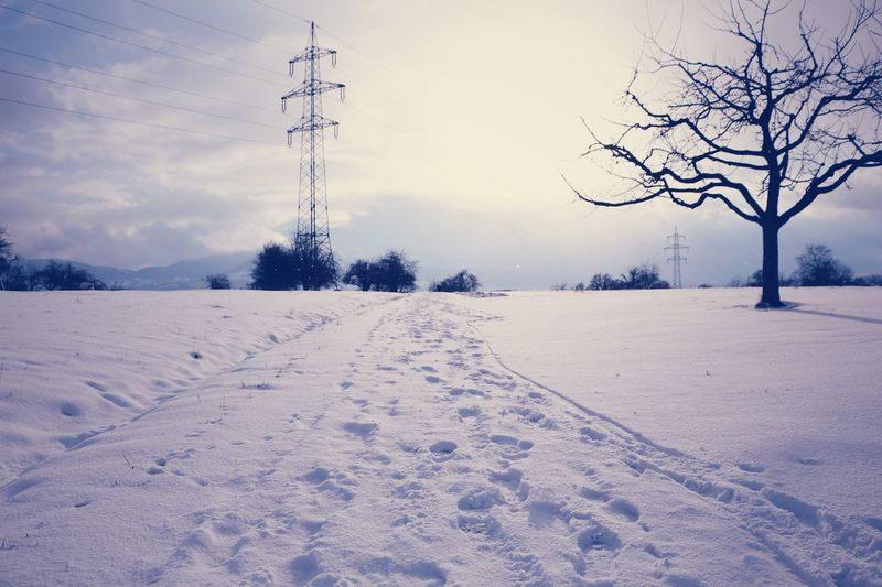 Snow white landscape ❄️🌨 Stuttgart Badenwürttemberg Nature Germany Germany🇩🇪 Snow Snow ❄ Winter Stuttgart,Germany Nature Photography Nature_collection Canonphotography Canon700D Kirchheim Unter Teck City Baden-Württemberg  Canon Home Is Where The Art Is Cold Day Landscape Landscape_photography Landscape Photography Snowlandscape Snow White Colour Of Life