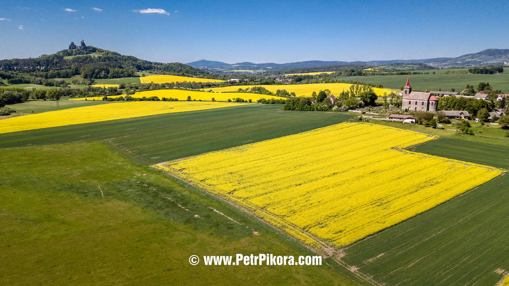 Agriculture Beauty In Nature Day Environment Field Grass Green Color Land Landscape Mountain Nature No People Outdoors Plant Rural Scene Scenics - Nature Sky Tranquil Scene Tranquility Tree Yellow