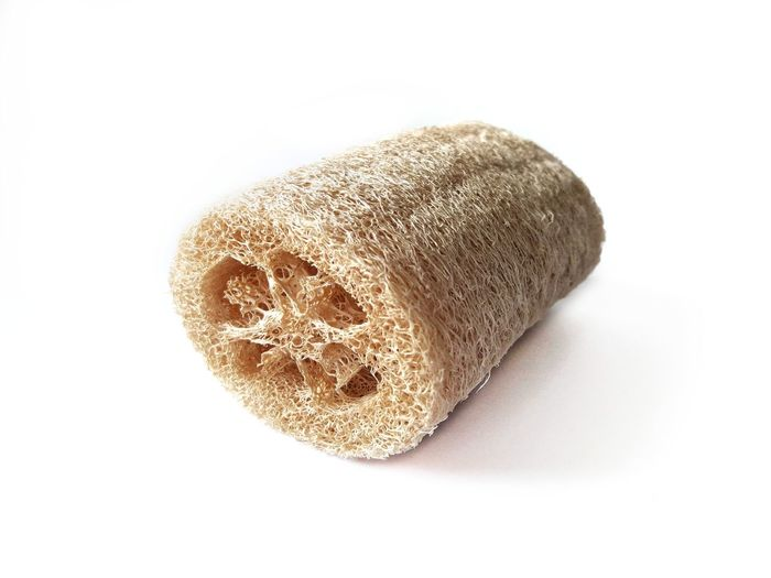 loofah body scrub isolated Natural Plant Circulatory System Relaxing Good Skin Equipment Clean Cuticle Epidermis Scream Scurfs Luffa Scrub Loofah Scrub Body Care Healthy Hygiene Skincare Health Care White Background Textured  Pattern Close-up