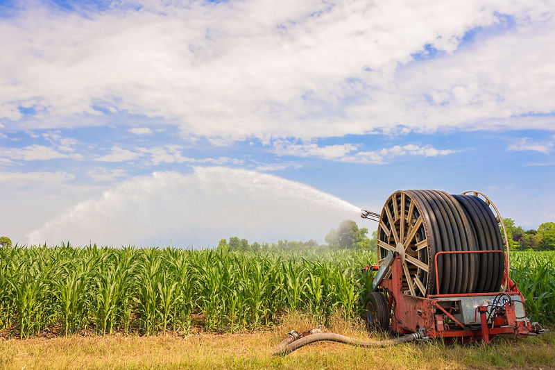 Agricultural equipment. Equipment pumping water on field of corn.Water sprinkler Agriculture Cloud Field Pump Rural Tube Beauty In Nature Corn Countryside Equipment Growth Irrigation Landscape Nature Outdoors Sky Sprinkler Tubes Water