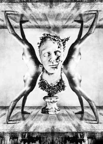 Bacchanalia Facial Experiments Photographic Approximation Today Will End Fragmented Reality Drinking In Moderation