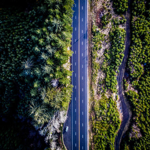 road Alpine Beauty In Nature Forest Freeway High Angle View Highway Nature No People Outdoors Road Scenics Tranquil Scene Tree