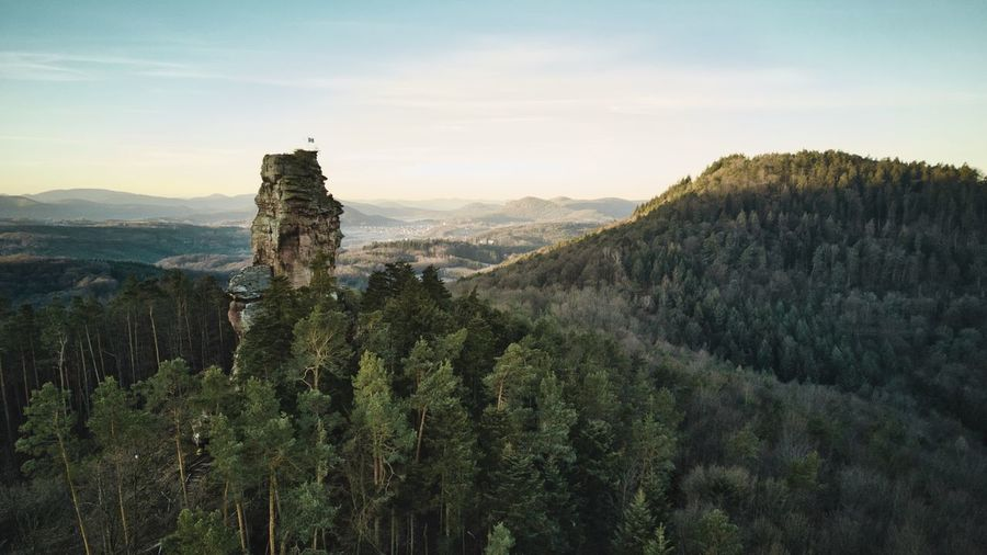 Der Amselfelsen, Pfälzerwald. Aerial View Sunrise Aerial View EyeEm Best Shots Pfälzerwald Plant Sky Beauty In Nature Growth Scenics - Nature Tranquility Tranquil Scene Nature Environment Mountain Green Color No People Idyllic Non-urban Scene Landscape My Best Photo Stay Out