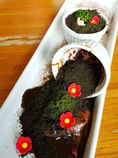 Chiang Mai | Thailand Chocolate Chocolatelover Chocolatedirtcup