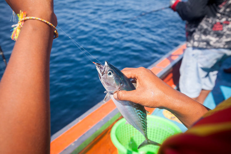 Catch Of Fish Day Fish Hand Holding Human Body Part Human Hand Leisure Activity Lifestyles Men Nature One Animal One Person Outdoors Real People Sea Vertebrate Water