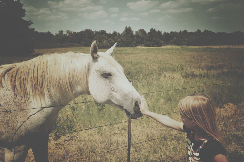 Young girl with horse Animal Animal Head  Beauty In Nature Child Country Life Day Field Girl Girl And Horse Grass Grassy Grazing Herbivorous Horse Landscape Livestock Mammal Nature Outdoors Pasture Ranch Rural Scene Sky White Horse
